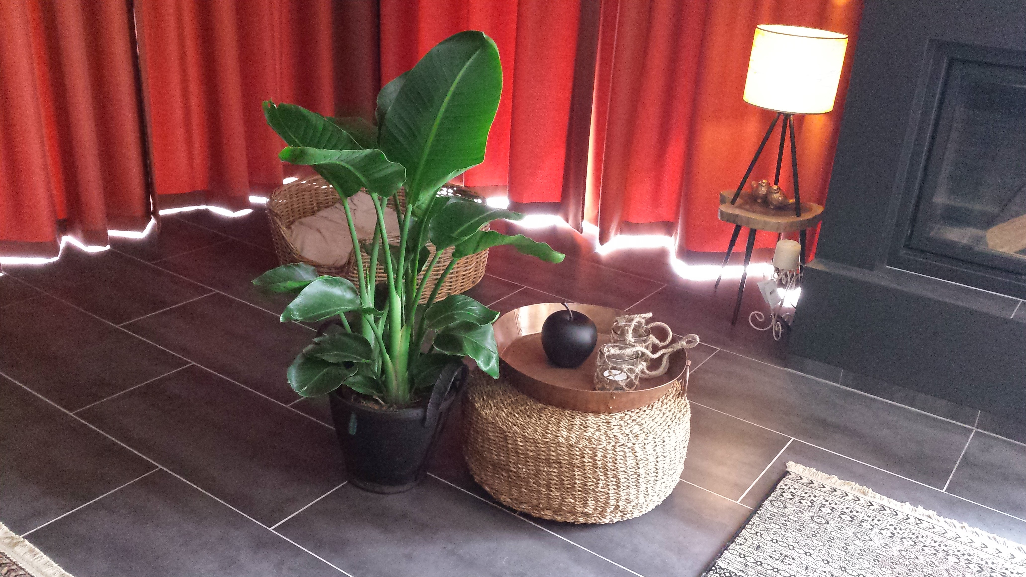 Grote plant en poef met dienblad